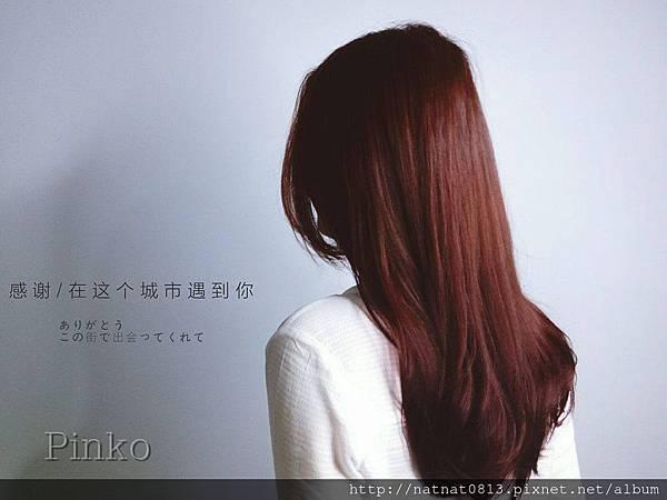 ║ 日系夏季的暖,warm color 。-*