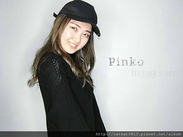 黑色素概念pinko
