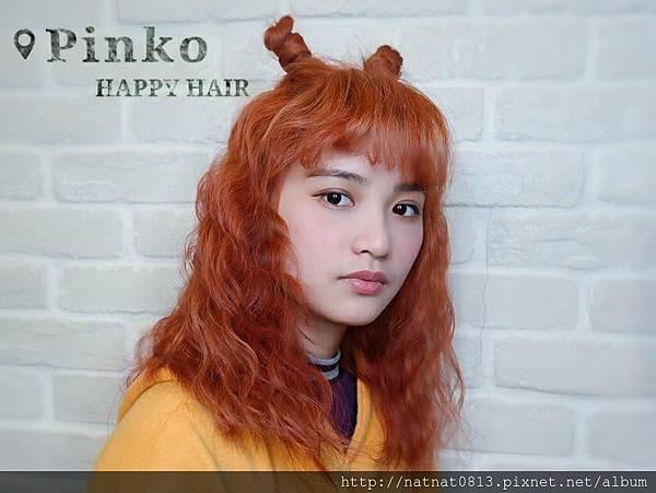 【染髮】橘 Orange 造型 妙麗QQ捲