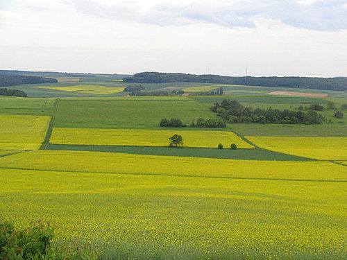 德國鄉間風景