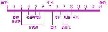 6jgneg_3.jpg