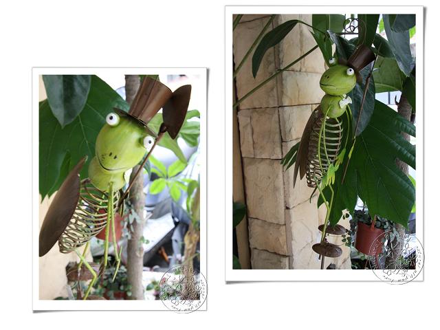 20110917園藝寶貝_08.jpg