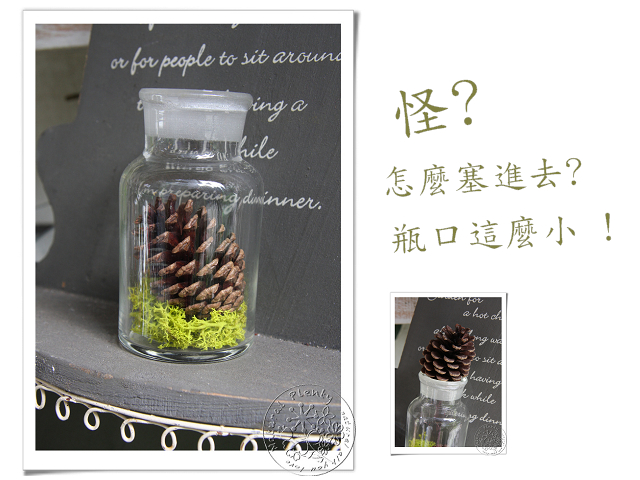 20120221-松果遊戲_01