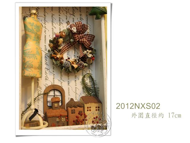 20121217-NXS02