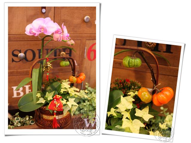 20130117_春節提籃_01