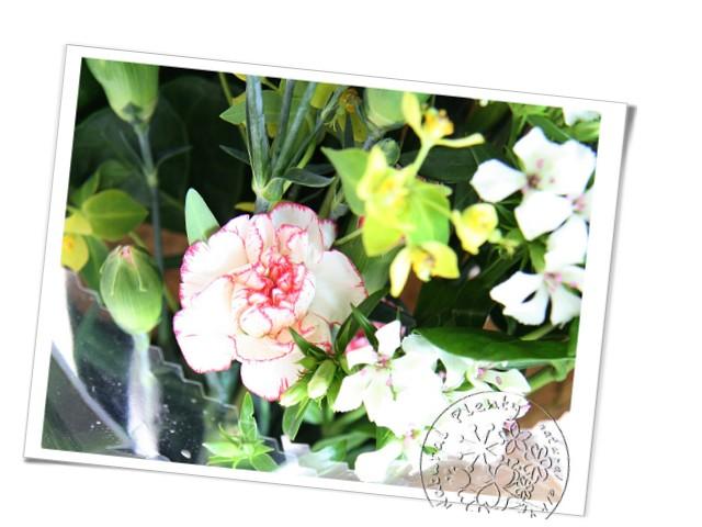 20110505母親節花束_02.jpg