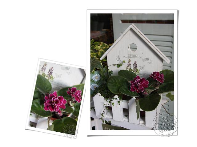 20101228春天訊息_01.jpg
