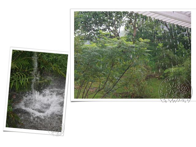 20110219節氣-雨水_02.jpg