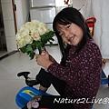 IMG_0307-1