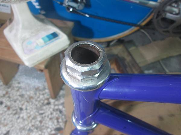 Panasonic track紫-7.JPG