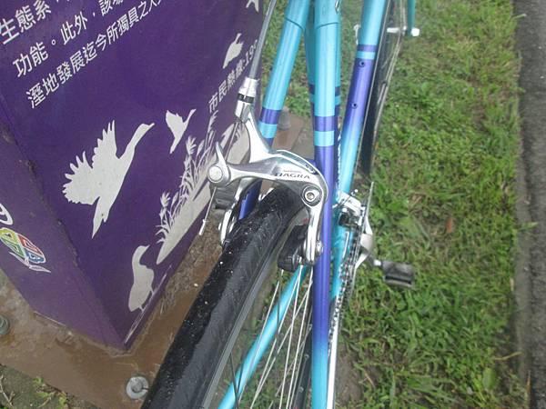Panasonic水藍測試-5.JPG