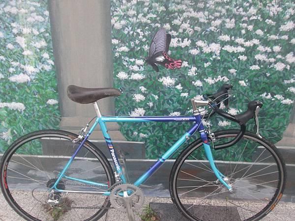 Panasonic水藍測試-18.JPG