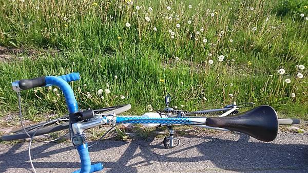 芬蘭單車旅行-32.JPG