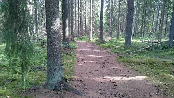 芬蘭單車旅行-84.JPG