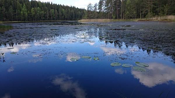 芬蘭單車旅行-89.JPG
