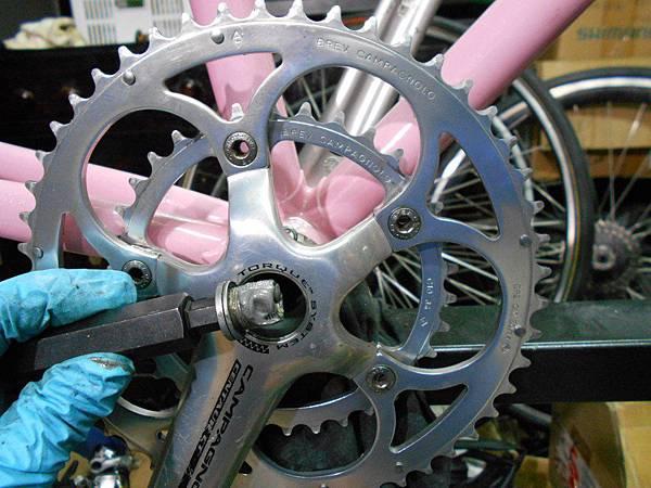 粉紅colnago-21.JPG