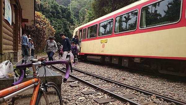 阿里山鐵路單車旅行 (10).JPG