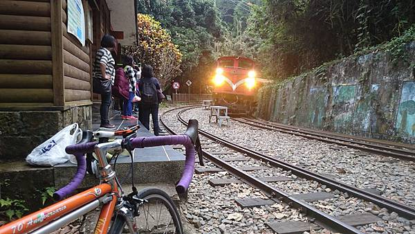 阿里山鐵路單車旅行 (8).JPG