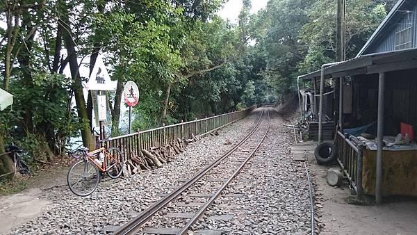 阿里山鐵路單車旅行 (5).JPG