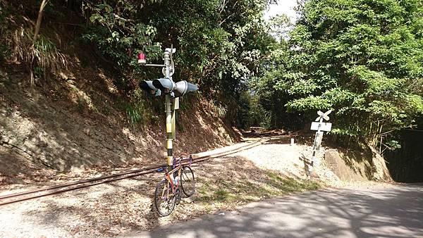 阿里山鐵路單車旅行 (28).JPG