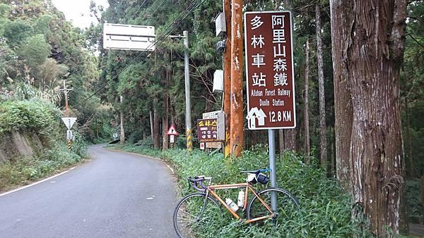 阿里山鐵路單車旅行 (55).JPG