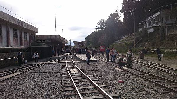 阿里山鐵路單車旅行 (60).JPG