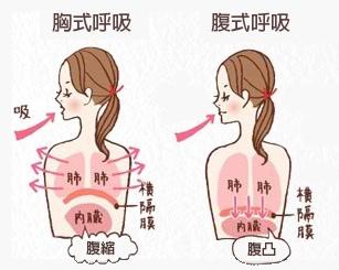 胸式腹式呼吸
