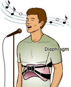 illustration-diaphragm-crop-246x300