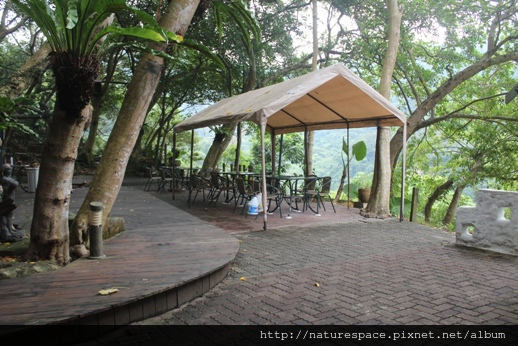 IMG_3598-restaurant-s.JPG