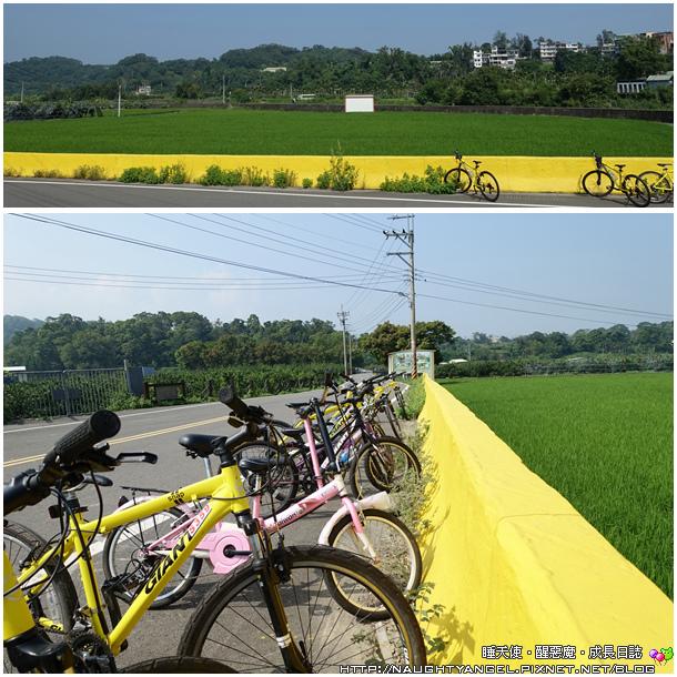 南埔腳踏車01
