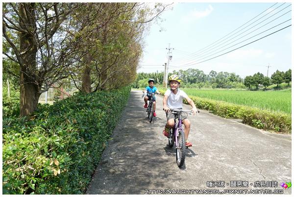 南埔腳踏車15