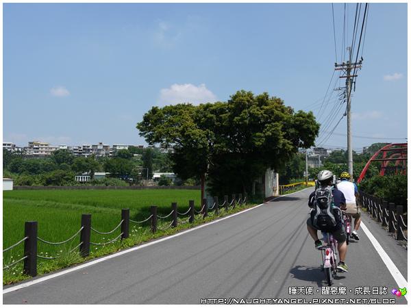 南埔腳踏車16