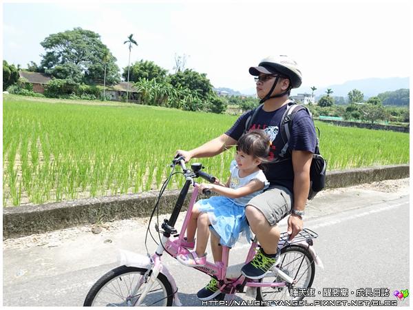 南埔腳踏車17