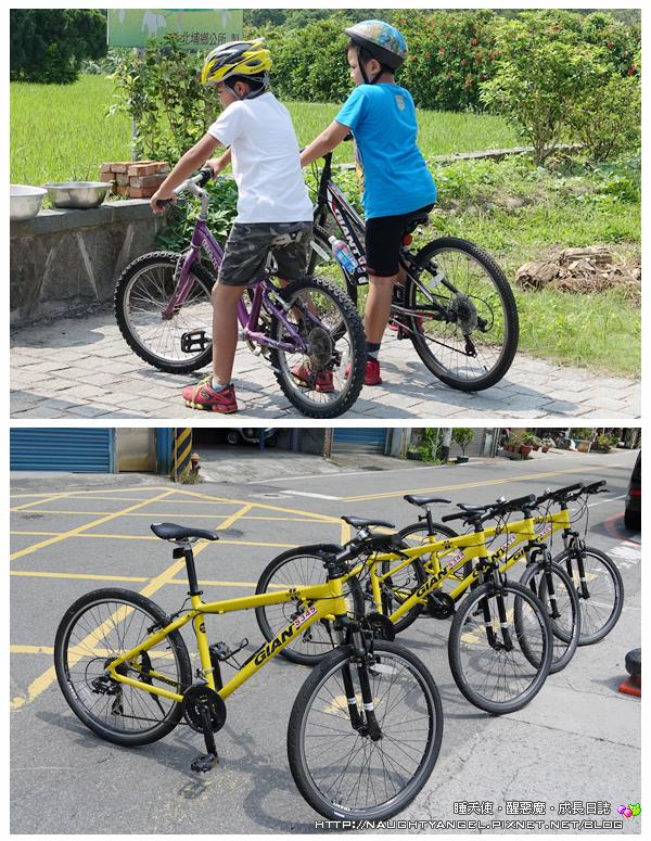 南埔腳踏車20