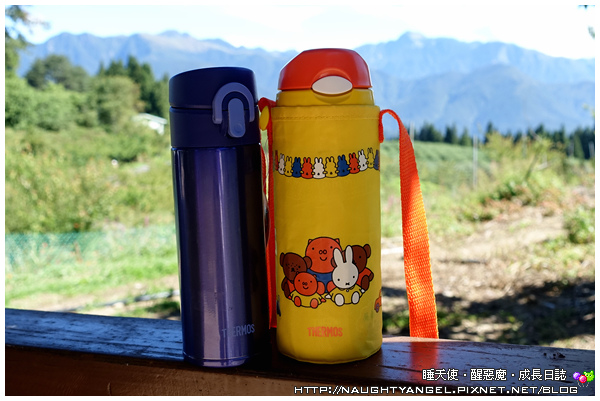 Thermos_F10