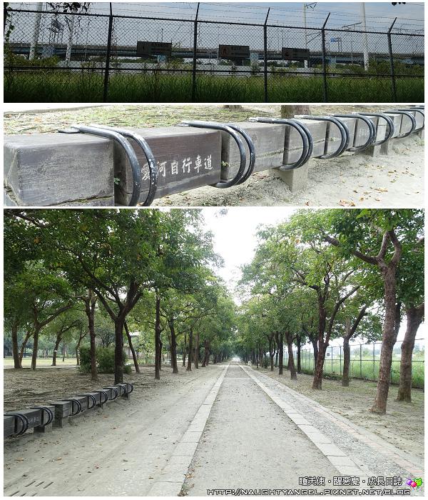 原生植物園4