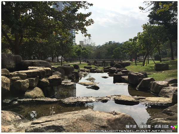 原生植物園5