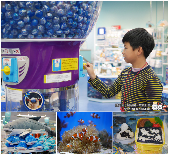 Okinawa Churaumi Aquarium Gift shop Umichurara