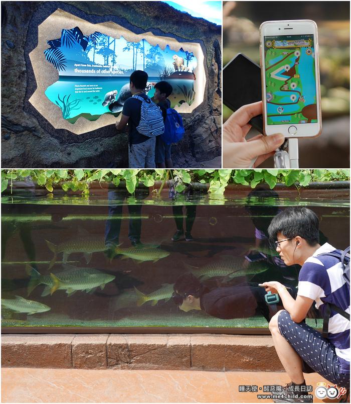 河川生態園