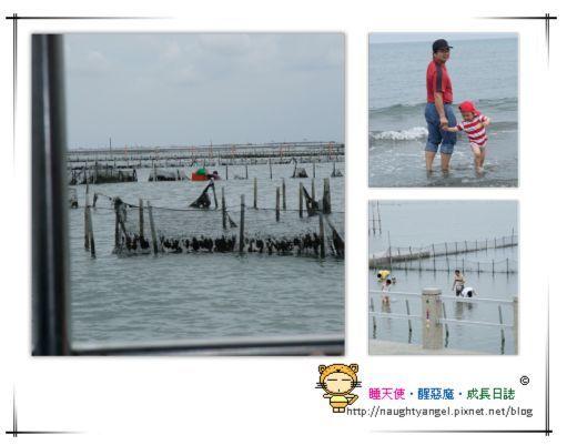 0517_七股潟湖F1.jpg