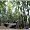 步道頂點--四天王山