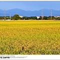 2013嘉南平原04.jpg