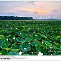 2013嘉南平原08.jpg