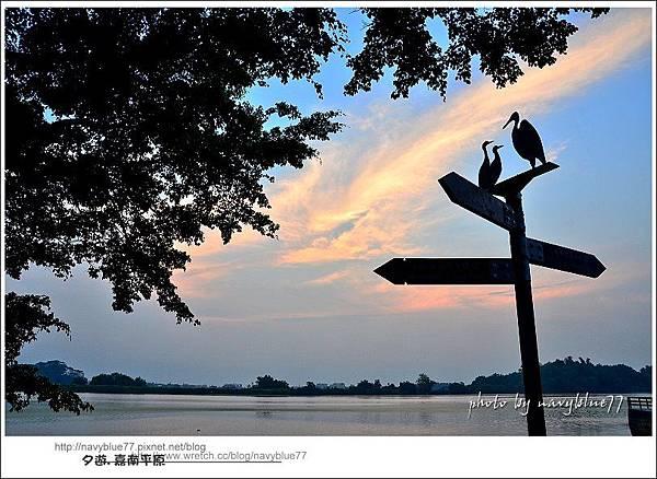2013嘉南平原11.jpg