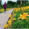daylily11.jpg