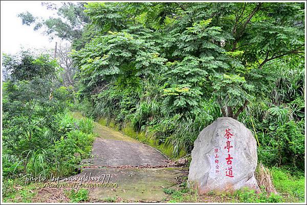 橫山大山背42.jpg