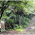 橫山大山背32.jpg