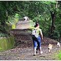 sheitian-trail12.jpg