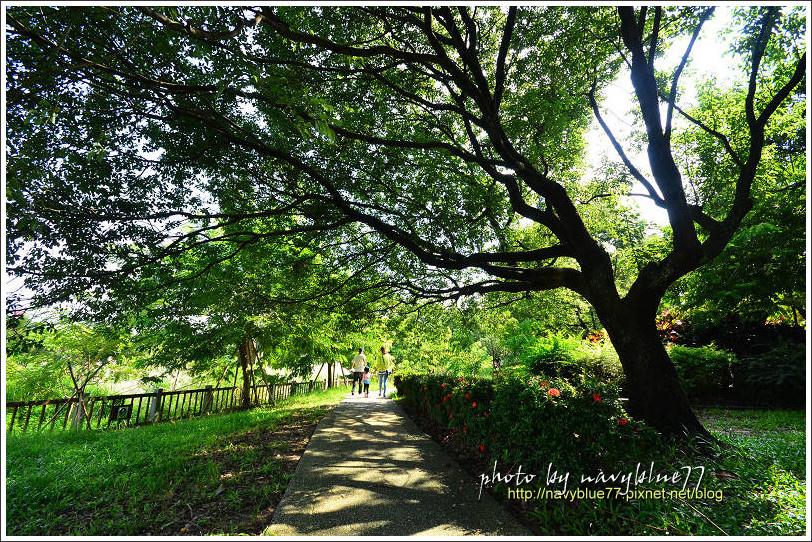 竹崎公園37.jpg