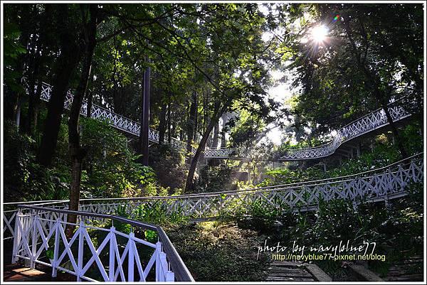 竹崎公園02.jpg